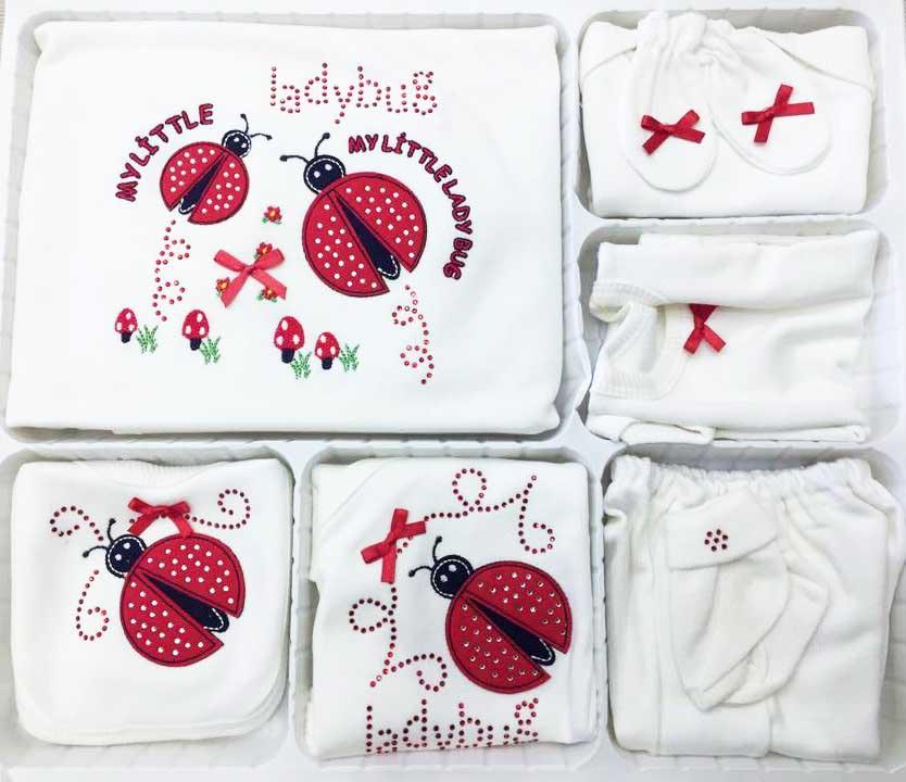 BABUSH Sevimli Uğur Böceği 10 Parça Bebe Zıbın Seti