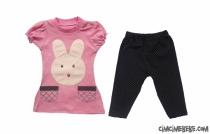 Tavşan Aplikeli Taytlı Bebe Takımı